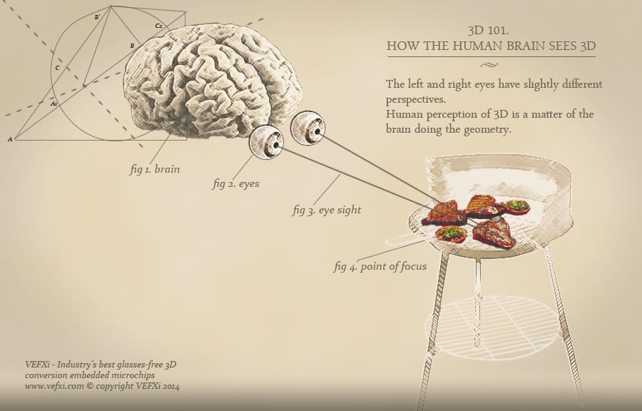 how a human brain works in How does your brain work your brain is the hub of your nervous system it is made up of 100 billion nerve cells - about the same as.